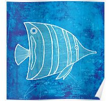 Fish, Illustration Over Nautical Map Poster