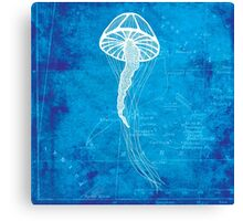 Jellyfish, Illustration Over Nautical Map Canvas Print