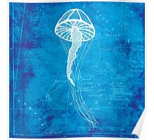 Jellyfish, Illustration Over Nautical Map Poster