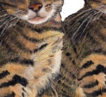 Bengal Kittens: Color Pencil Drawing of CATS Sticker