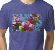 Santa Cruz Magnolias Tri-blend T-Shirt