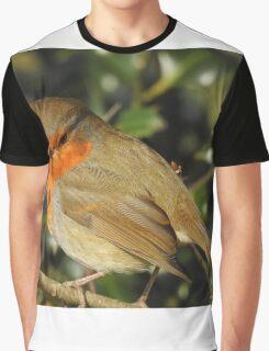 Robin  Graphic T-Shirt
