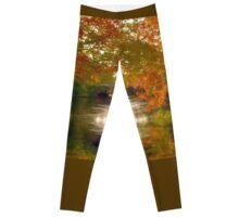 Fall Afternoon Leggings