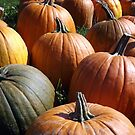 Pumpkins For Sale by Rusty Katchmer