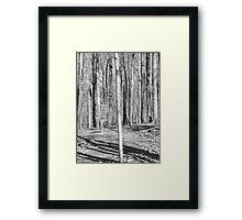 Black And White Disc Golf Basket Framed Print