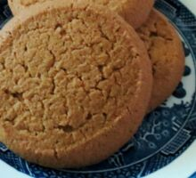 Nice things come in threes -  Mild Ginger Biscuits Sticker