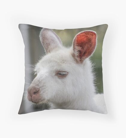 Albino kangaroos Throw Pillow