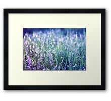 The moor Framed Print
