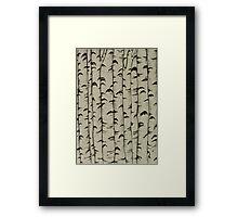 A Bunch of Birch Framed Print