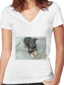 Murphy - Cute K9 Women's Fitted V-Neck T-Shirt