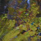 Runaway greens by MarianBendeth
