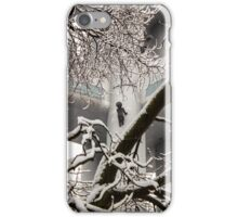 climbing up the walls iPhone Case/Skin
