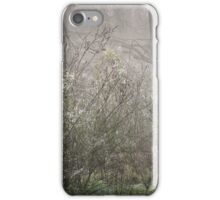 Cobweb's and Lace iPhone Case/Skin