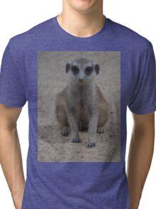 Cute Meerkat Tri-blend T-Shirt