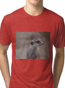 Meerkat Face Tri-blend T-Shirt