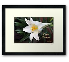 The Easter Lily ~ a Biblical Flower Framed Print