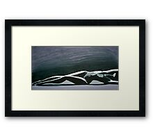 Beautiful Diver Framed Print