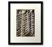 Dried Fish Framed Print
