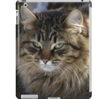 grumpy or annoyed iPad Case/Skin