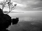 Snug Coast by John Douglas