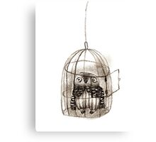 Baby Owl Sitting In a Birdcage Canvas Print