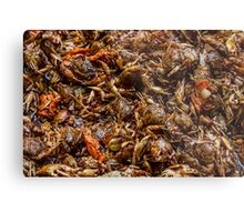 Fresh Crab Korean Market Metal Print