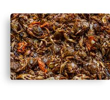 Fresh Crab Korean Market Canvas Print