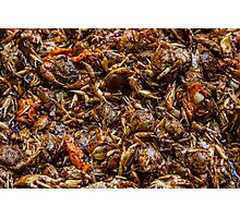 Fresh Crab Korean Market Photographic Print