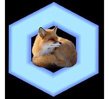 Fox Reflector (Smash Bros) Photographic Print
