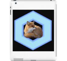 Fox Reflector (Smash Bros) iPad Case/Skin