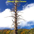 Card - Stand Tall - Don't Let Anything Grind You Down by Francis Drake