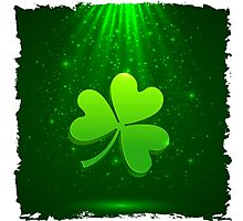 Clover leaf Photographic Print