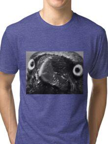 crow 3 Tri-blend T-Shirt