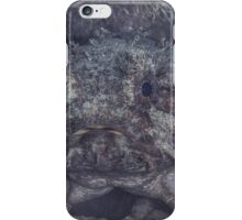 Banded Toadfish iPhone Case/Skin