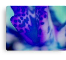 Macro of an Orchid Canvas Print