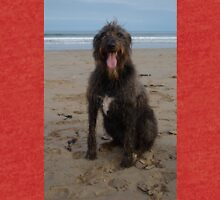 Dog Fresh From Surf Tri-blend T-Shirt