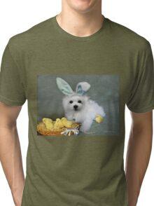 Hermes at Easter Tri-blend T-Shirt