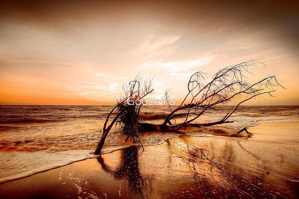 Hurricane victim  by Gouzelka