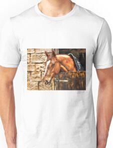 Beautiful Arizona Unisex T-Shirt