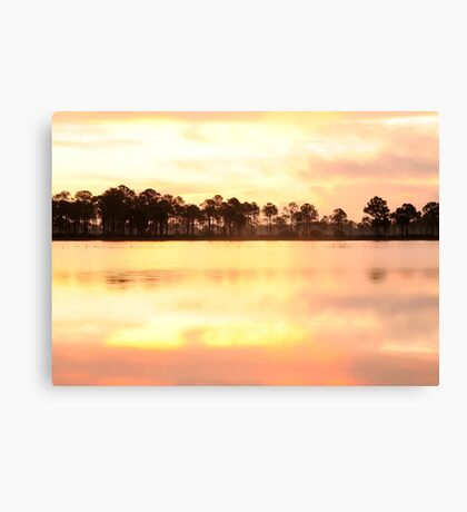 Florida Wildlife Canvas Print