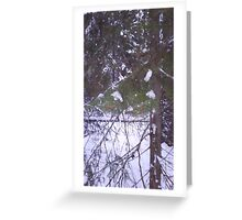 winter wonder land Greeting Card