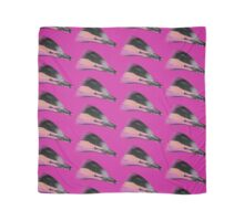 Common Dolphin (version rose/pink) Scarf
