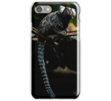 Common Marmoset iPhone Case/Skin