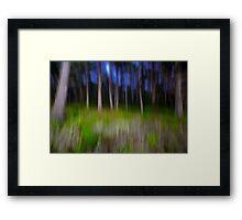 Carmel Cypress Trees Framed Print