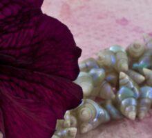 Velvet And Shells Sticker