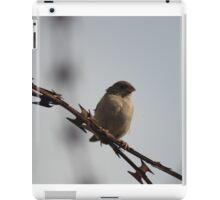 Lonely Bird iPad Case/Skin