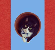 Bicolor cat panzon Feline Tri-blend T-Shirt