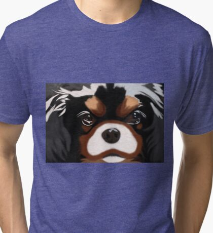 Grumpy Dog 2 Tri-blend T-Shirt