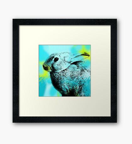 SPRING; Blue Hare Framed Print