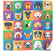 Dogs flat design  Poster